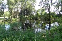 Galeria zdjęć Sochowej Zagrody - podwórko i przyroda (181)