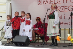 2015-05-23 Działoszyn - zdjęcia (7)