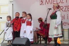 2015-05-23 Działoszyn - zdjęcia (8)