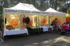 2015-08-01 Rawa Maz. - triatlon (13)