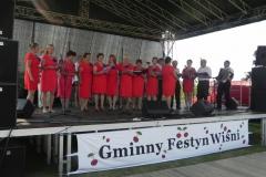 2015-08-09 Regnów - festyn (15)