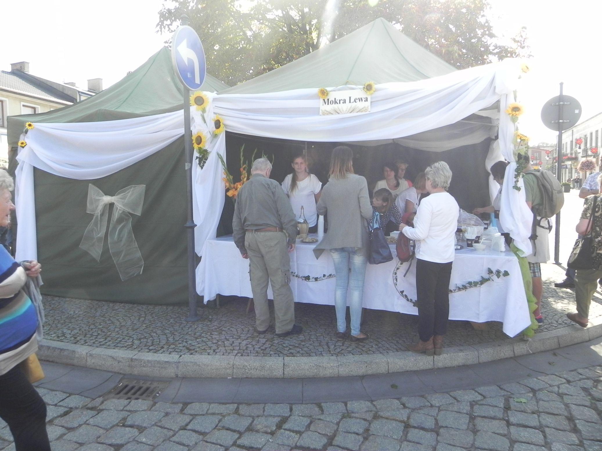 2015-09-20 Skierniewice - święto kwiatów (3)