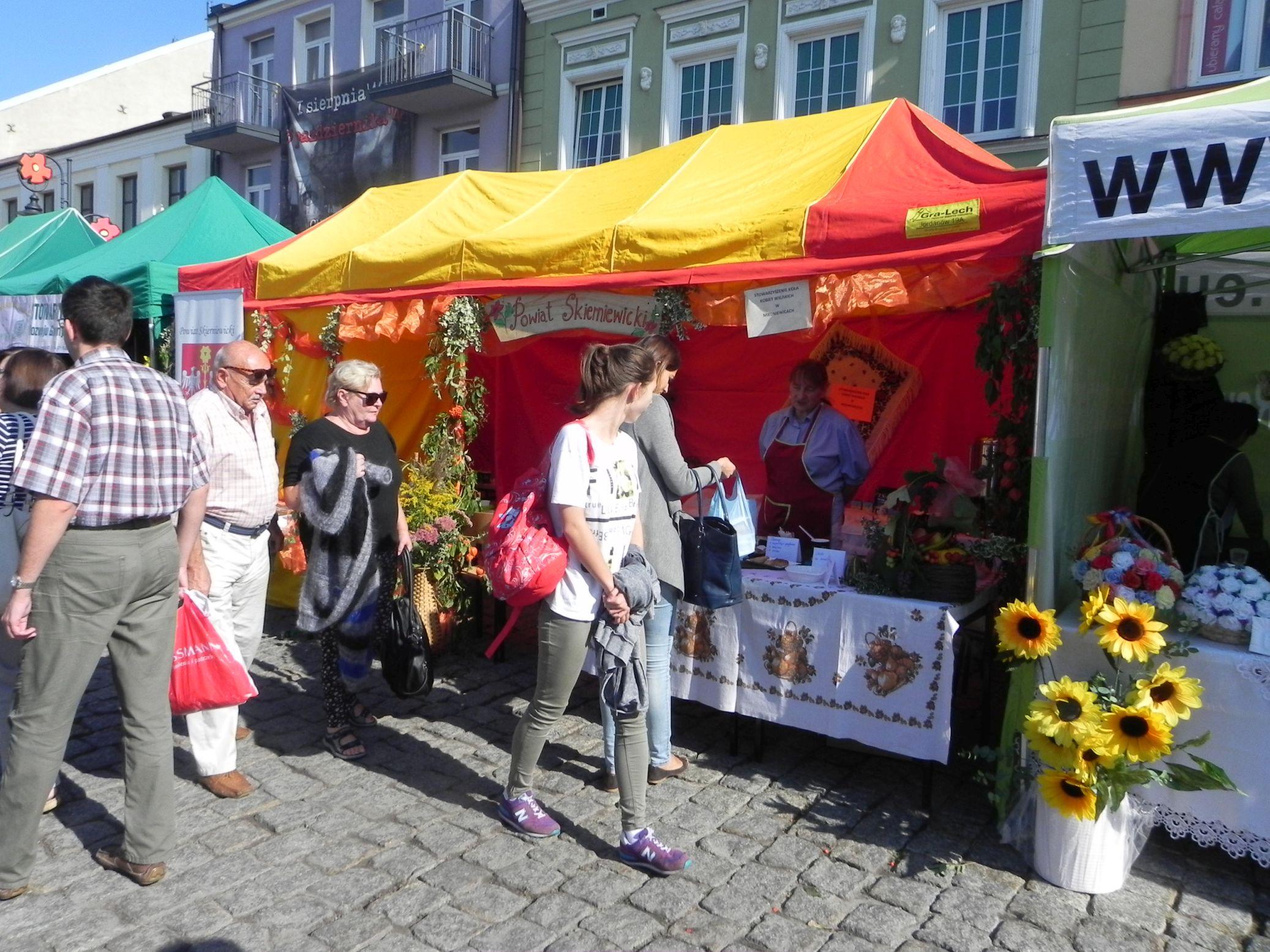 2015-09-20 Skierniewice - święto kwiatów (7)