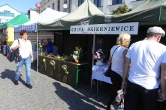 2015-09-20 Skierniewice - święto kwiatów (9)