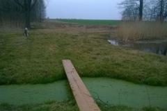 Galeria zdjęć Sochowej Zagrody - podwórko i przyroda (12)