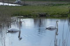 Galeria zdjęć Sochowej Zagrody - podwórko i przyroda (33)