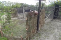 Galeria zdjęć Sochowej Zagrody - podwórko i przyroda (39)