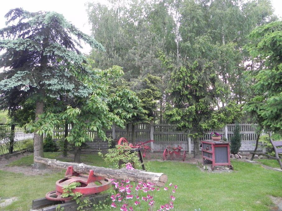 Galeria zdjęć Sochowej Zagrody - podwórko i przyroda (100)