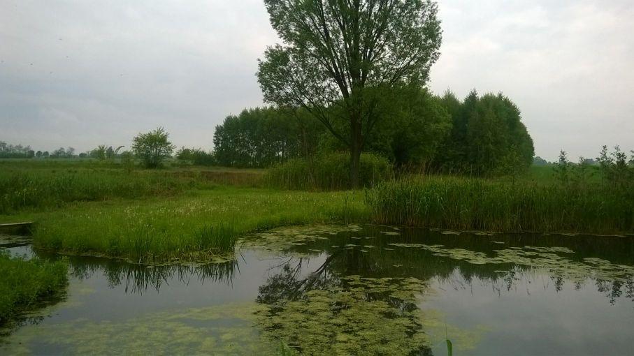 Galeria zdjęć Sochowej Zagrody - podwórko i przyroda (110)