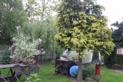 Galeria zdjęć Sochowej Zagrody - podwórko i przyroda (104)