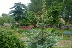 Galeria zdjęć Sochowej Zagrody - podwórko i przyroda (125)