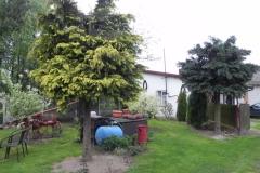 Galeria zdjęć Sochowej Zagrody - podwórko i przyroda (71)