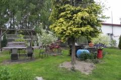 Galeria zdjęć Sochowej Zagrody - podwórko i przyroda (84)