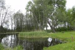 Galeria zdjęć Sochowej Zagrody - podwórko i przyroda (92)