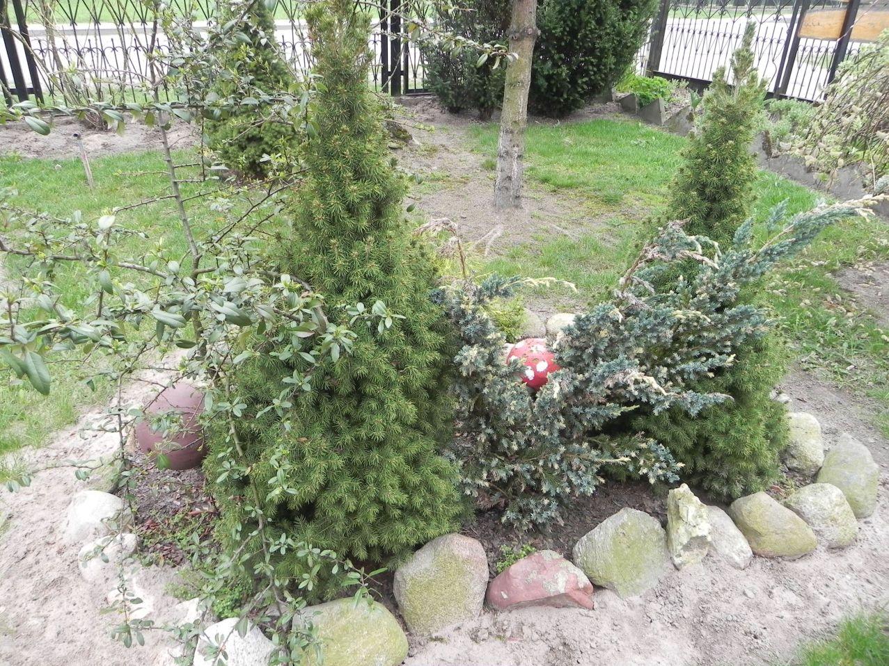 Galeria zdjęć Sochowej Zagrody - podwórko i przyroda (201)