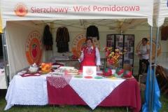 2016-05-03 Rawa Maz. - Radosne Święto (4)