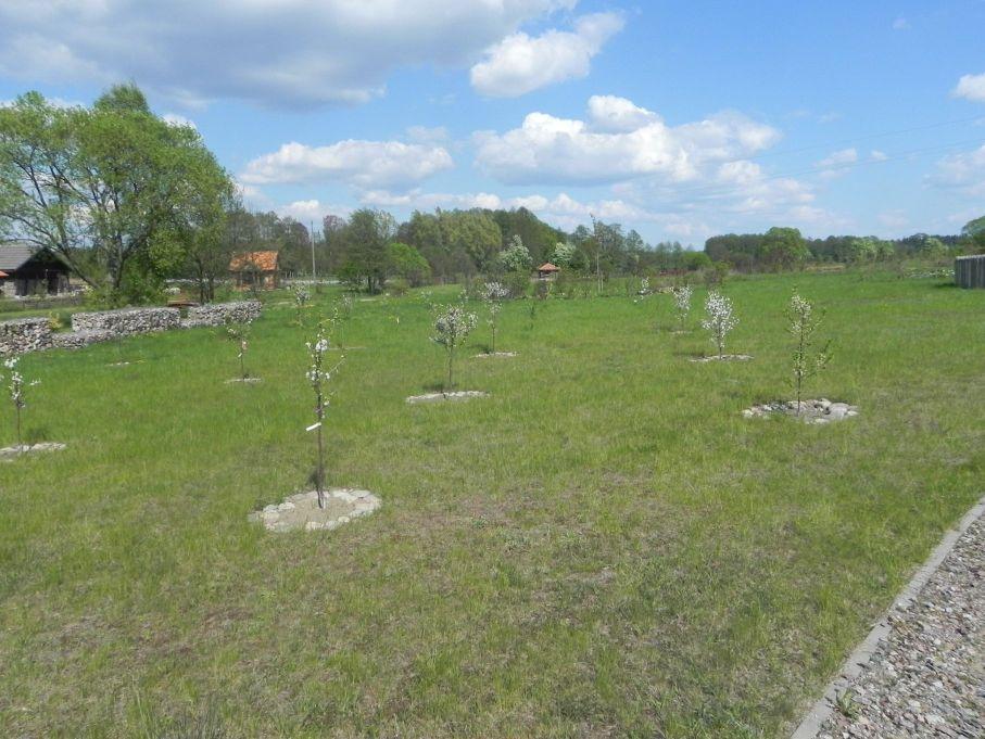 2016-05-07 Kamionka - Wiska Garncarska (43)