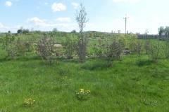 2016-05-07 Kamionka - Wiska Garncarska (41)