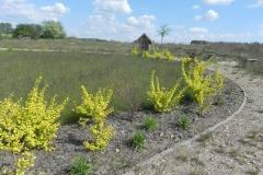 2016-05-07 Kamionka - Wiska Garncarska (52)
