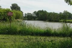 2016-05-29 Wilkowice - Majówka (3)