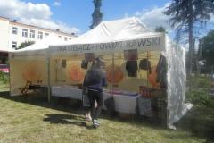 2016-06-19 Stara Rossocha - festyn (5)