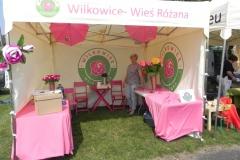 2017-08-27 Biała Rawska - dożynki (40)