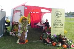 2017-08-27 Biała Rawska - dożynki (42)