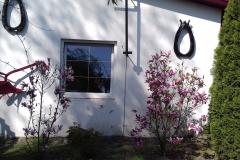 2018-04-15 Wiosna w Sochowej Zagrodzie (25)