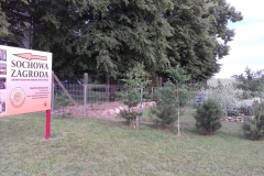 2018-06-04 Czerwiec w Sochowej Zagrodzie (16)