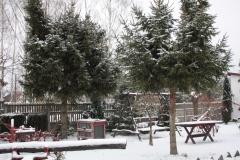 2018-12-16 Sierzchowy - zima (11)