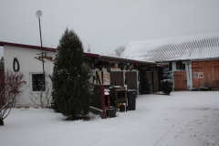 2018-12-16 Sierzchowy - zima (8)