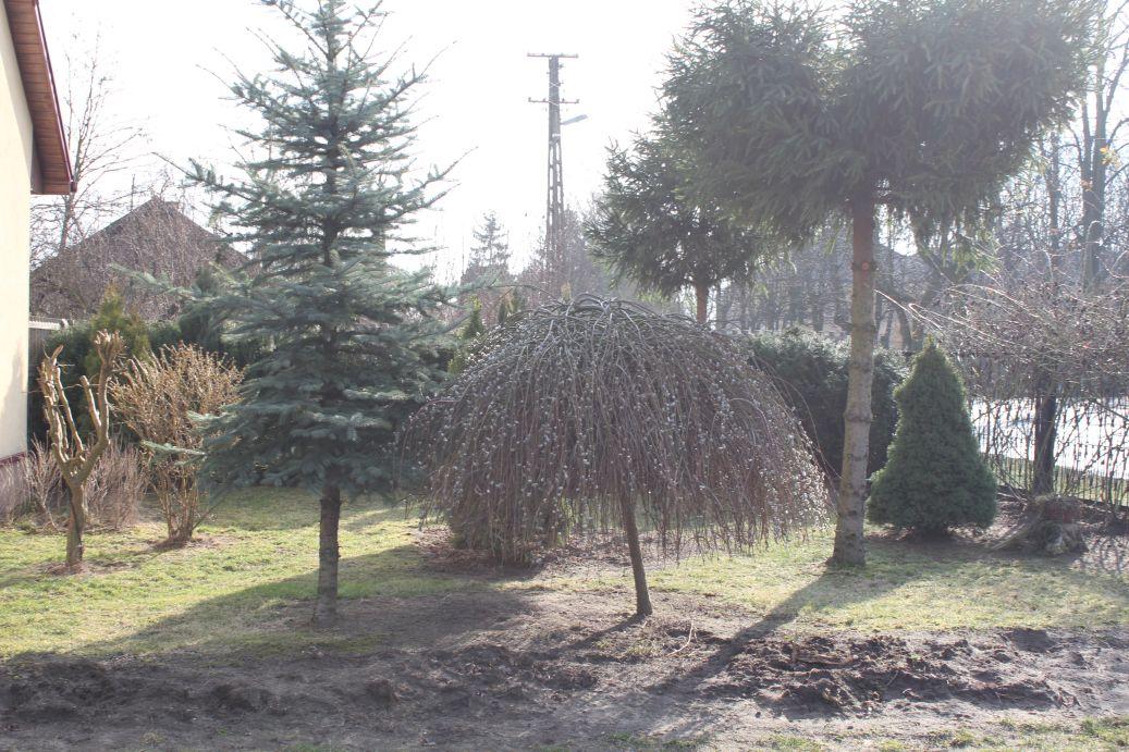 2019-03-17 Sochowa Zagroda - wiosna (19)