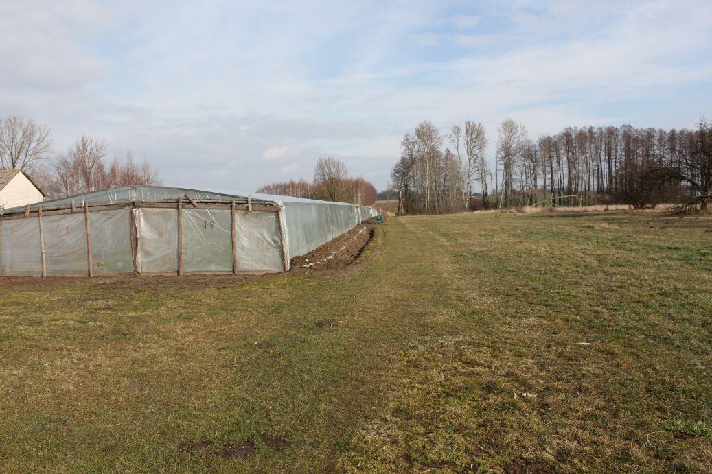 2019-03-17 Sochowa Zagroda - wiosna (39)