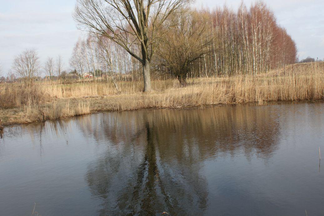 2019-03-17 Sochowa Zagroda - wiosna (44)