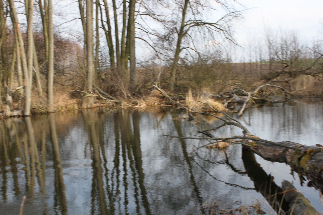 2019-03-17 Sochowa Zagroda - wiosna (48)