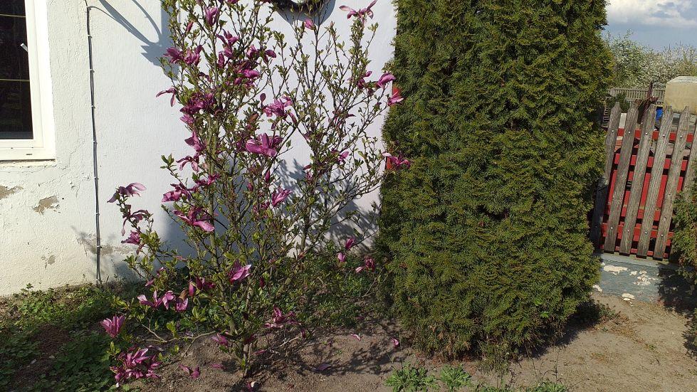 2019-04-22 Sochowa Zagroda - Wielkanoc (14)