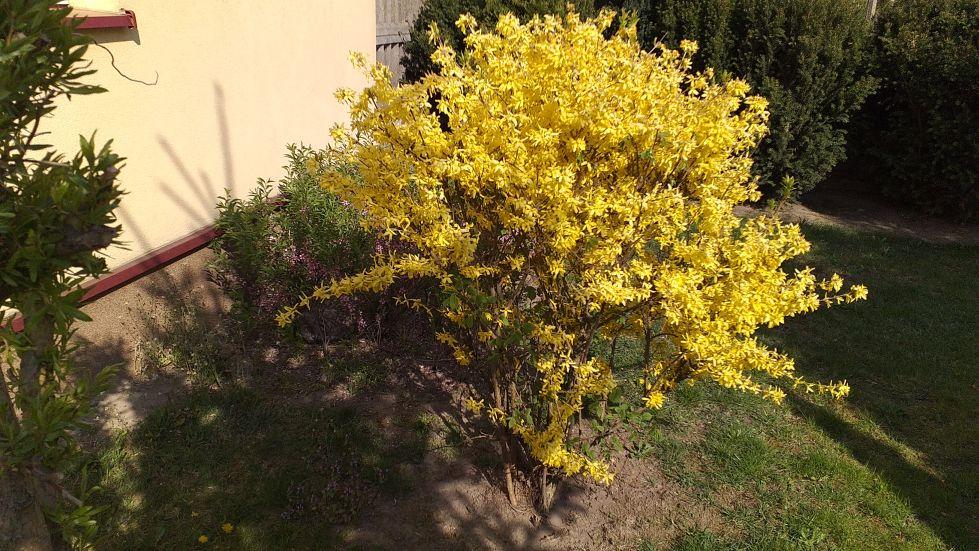 2019-04-22 Sochowa Zagroda - Wielkanoc (33)