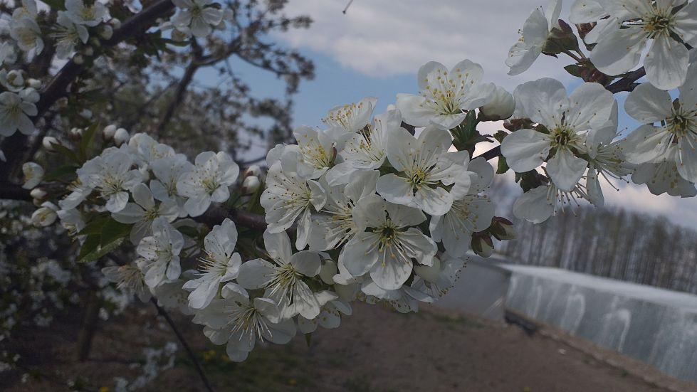 2019-04-22 Sochowa Zagroda - Wielkanoc (49)
