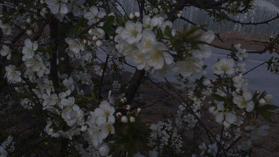 2019-04-22 Sochowa Zagroda - Wielkanoc (50)