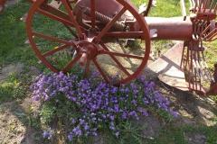 2019-04-22 Sochowa Zagroda - Wielkanoc (15)