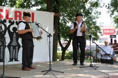 2019-06-08 Maciejowice (14)
