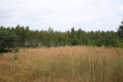 2019-07-28 Gustawów (10)