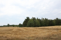 2019-07-28 Gustawów (2)