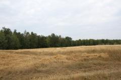 2019-07-28 Gustawów (3)