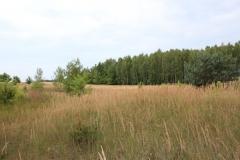 2019-07-28 Gustawów (6)
