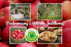 Widokówka Wioski Jabłkowej z Sadkowic