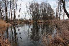 2020-02-16 Sochowa Zagroda - nad stawem (10)
