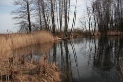 2020-02-16 Sochowa Zagroda - nad stawem (12)