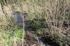 2020-04-19 Sochowa Zagroda - wiosna (4)