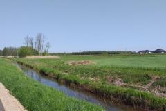 2020-05-10 Sierzchowy (7)